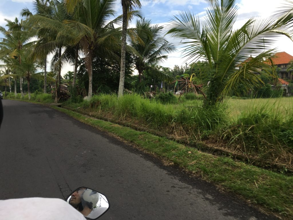 Riding a scooter through Bali